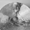 Piatto in argento 800 d'epoca anni 50